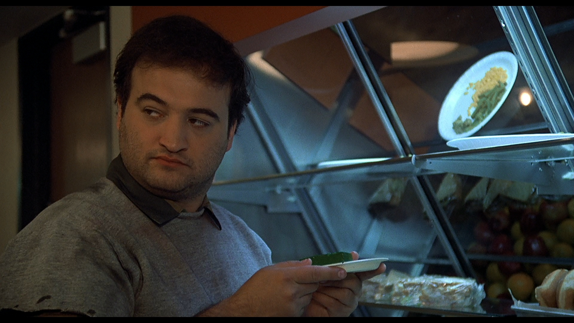 animal pictures free hd: Animal House Pictures